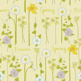 Spring seamless background Royalty Free Stock Photo