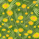 Spring seamless floral pattern Royalty Free Stock Image