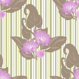 Spring seamless floral pattern on striped Stock Photo
