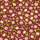 Spring seamless with flowers. Royalty Free Stock Photography