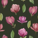Seamless pattern of flowers and leaves of magnolia. royalty free illustration