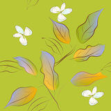 Spring seamless pattern Royalty Free Stock Photo