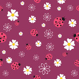 Spring seamless pattern with flowers and ladybirds. Royalty Free Stock Photography