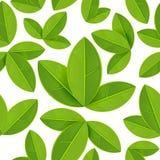 Spring seamless pattern Royalty Free Stock Photos
