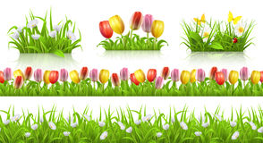Spring seamless pattern, grass and flowers 3d vector set Royalty Free Stock Images