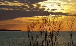 Spring seaside. Spring sunset with sea and branches Stock Photography