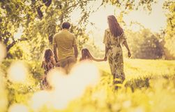 Spring season is best time for walking in nature. royalty free stock images