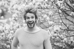 Spring season concept. New life and optimism. Flourishing, nature, growth. Man smile in park with blossoming trees. Guy with beard smiling in yellow sweater on stock photography