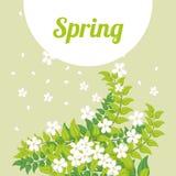 Spring season design Stock Photography