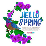 Spring season frame witn exotic bird sitting on a branch with leaves and flowers. Hand drawn vector illustration with text Hello Spring.  on white background Stock Image