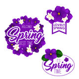 Spring season holiday badge set with flowers. Spring floral wreath and badge set. Flower frame and bunch of violet and jasmine with green leaf isolated symbol Royalty Free Stock Images