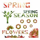 Spring season theme with flowers and leafs. Spring text, tree, flower shapes made of natural leafs and flowers patterns vector illustration
