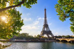 Spring Seine Eiffel Royalty Free Stock Images