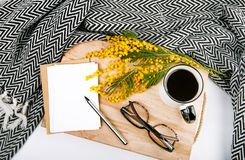 Spring set with flowers yellow mimosa plaid cup coffee pen glass. Spring set with flowers yellow mimosa plaid cup with coffee postcards pen glasses on wooden Stock Image