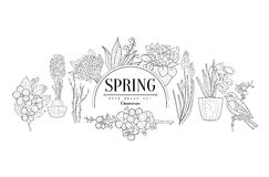 Spring Set Vintage Sketch Royalty Free Stock Photos