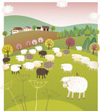 Spring sheep Royalty Free Stock Photo