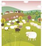 Spring sheep Royalty Free Stock Photo