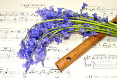 Spring Sheet Music And Bluebell Flowers Royalty Free Stock Image