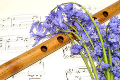 Spring Sheet Music And Bluebell Flowers Royalty Free Stock Photo