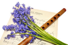Spring Sheet Music And Bluebell Flowers Stock Photography