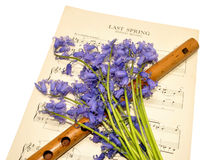 Spring Sheet Music And Bluebell Flowers Stock Image