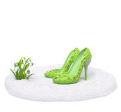 Spring shoes. Spring collection shoes on nature podium (sale, fashion, advertising, shopping creative concept). Woman high heels with sprigs (buds) and melting Stock Photography