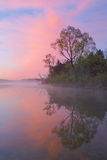 Spring Shoreline at Dawn. Foggy, spring shoreline of Whitford Lake at dawn, Fort Custer State Park, Michigan, USA Stock Image