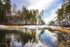 Spring. Siberia, river Ob Royalty Free Stock Image