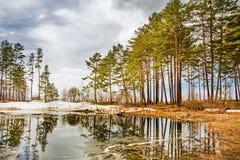 Spring. Siberia, river Ob Royalty Free Stock Photography
