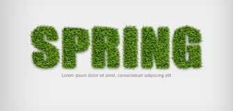Spring sign in green grass Vector realistic. Spring sales banner on white backgrounds stock illustration