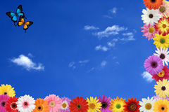 Spring Sky Stock Photo