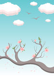 Spring. Sky with the branch of the tree in bloom on it Royalty Free Stock Image