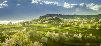 Free Spring Slovakia Landscape. Nature Fields With Blooming Cherries. Unique Ecological Land Management. Polana Region, Hrinova, Slovak Stock Images - 183559134