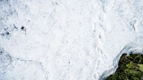 Spring snow melting in the real forest stock photography