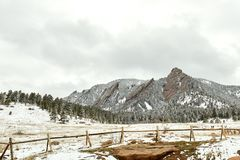 Spring Snow Storm in Chautauqua Park royalty free stock photo