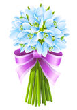 Spring snowdrop flowers bouquet with pink ribbon vector illustration