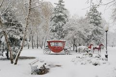During spring snowfall in city park Royalty Free Stock Photo