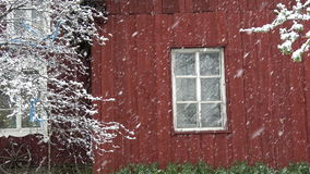 Spring snowfall on red  house wall background stock video