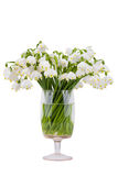 Spring snowflake bouquet in a vase Royalty Free Stock Photo