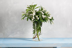 Spring snowflake Leucojum vernum bouquet in glass vase on blue wood table and gray background. Stock Photos