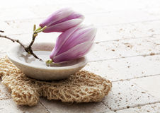 Spring soothing body exfoliation at home spa Royalty Free Stock Photos