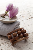 Spring soothing rejuvenation at home spa Stock Images