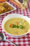 Spring soup Royalty Free Stock Photos