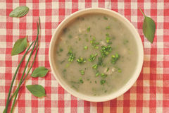 Spring soup Stock Images