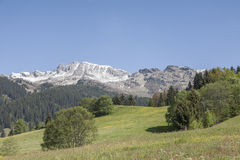 Spring in South Tyrol Royalty Free Stock Photos