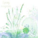 Spring spa υπόβαθρο με τα χορτάρια και τη χλόη Στοκ Εικόνες