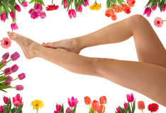 Spring Spa Stock Photography