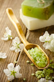 Spring spa background Royalty Free Stock Images