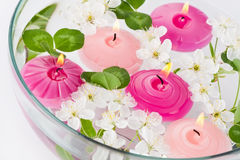 Spring SPA composition: candles and flowers Royalty Free Stock Image
