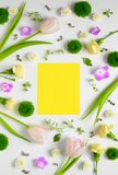 Spring Spa or greeting card concept Stock Image